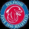 Logo_TSVE_Bielefeld
